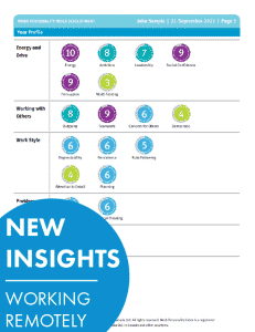Work personality Index New Insights Working Remotely
